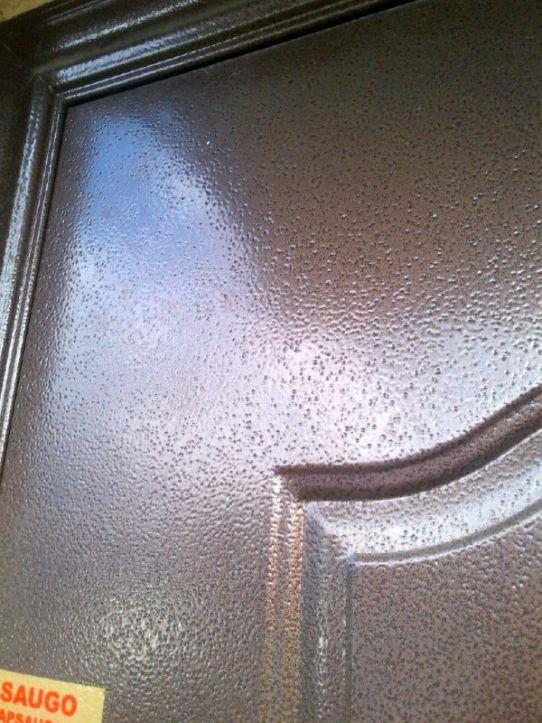 Durų paviršius